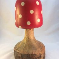 Sycamore (Painted Toadstool)
