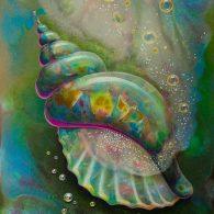 Mollusc's Delight